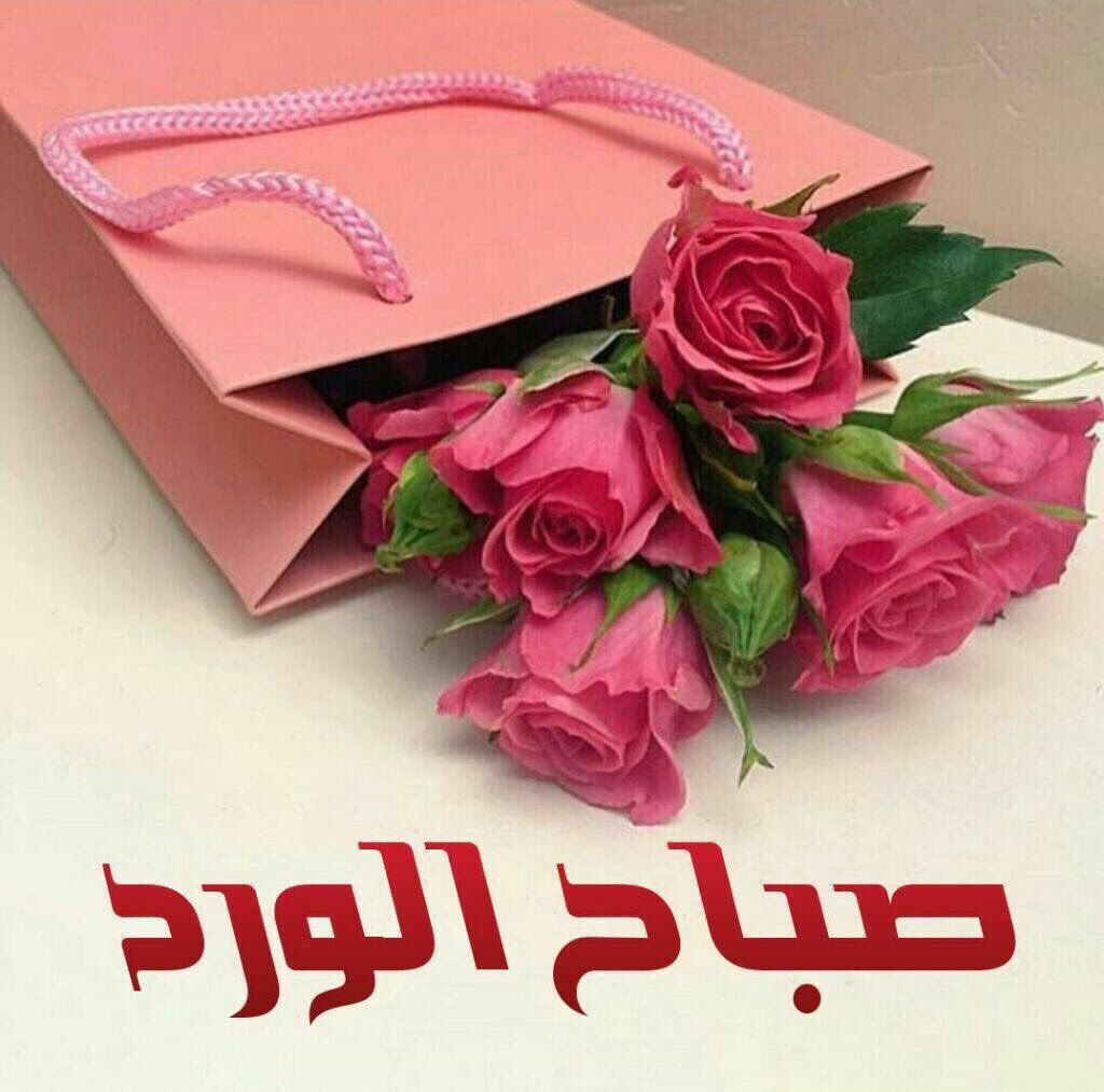 May Sayegh Maygsayegh تويتر Good Morning Images Flowers Good Morning Arabic Good Morning Greetings
