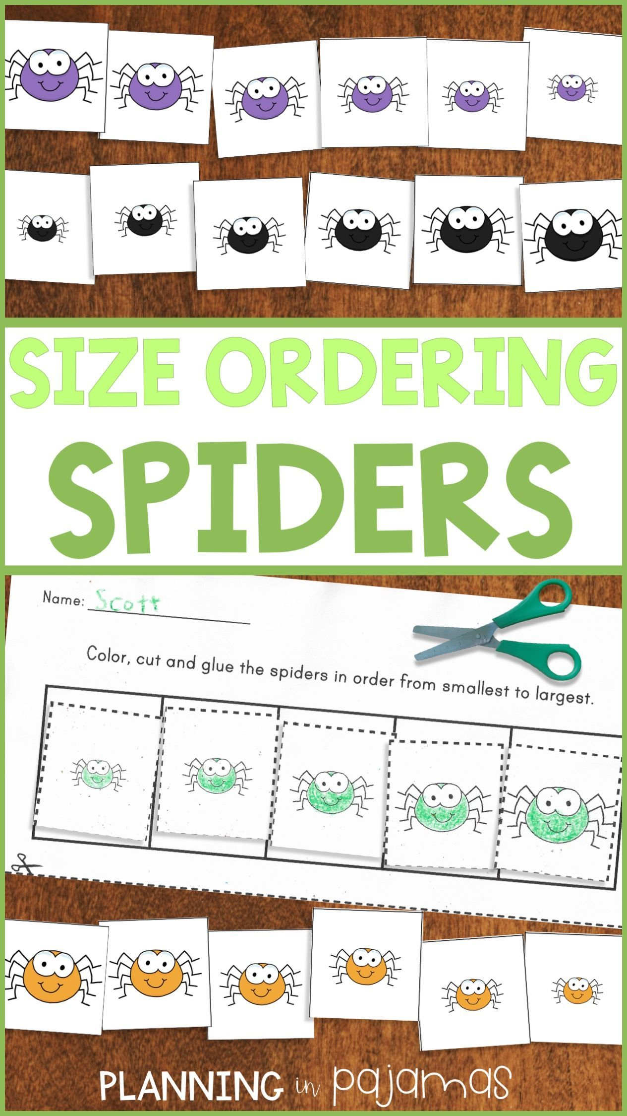 Spiders Size Ordering From Smallest To Largest