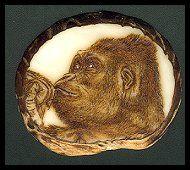 'Low Land' - Gorilla. Pyrography (woodburning)  on Tagua slice. (Palm Ivory) - Sue Walters