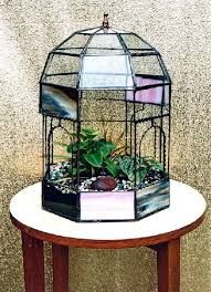 Image Result For Stained Glass Terrarium Pattern Projects To Try