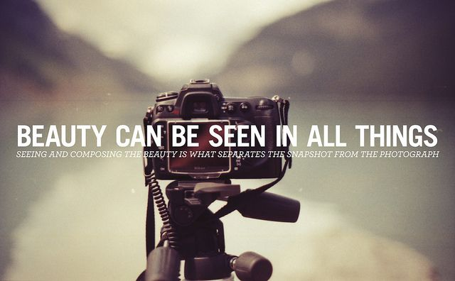 283/365   Quotes about photography, Photographer quotes, Photography quotes  tumblr