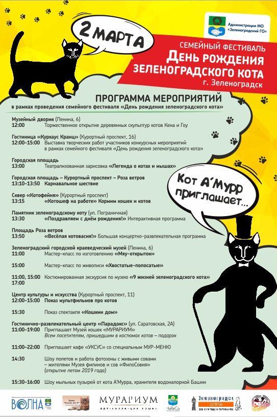 Праздничная программа дня зеленоградского кота