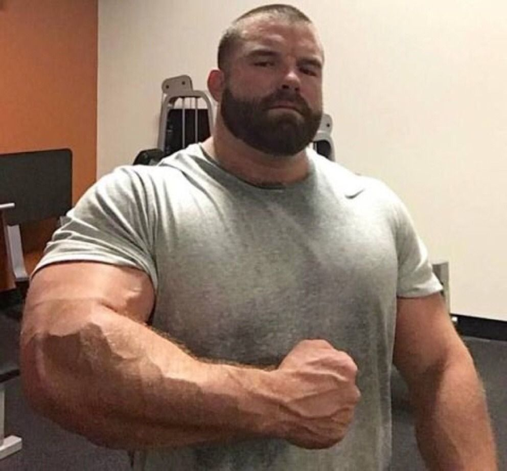 Fascinating muscle bears