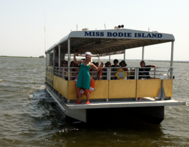 Dolphin Tours #OuterBanks  #NorthCarolina #KittyHawkKites #obx #outerbankscoastalcottages