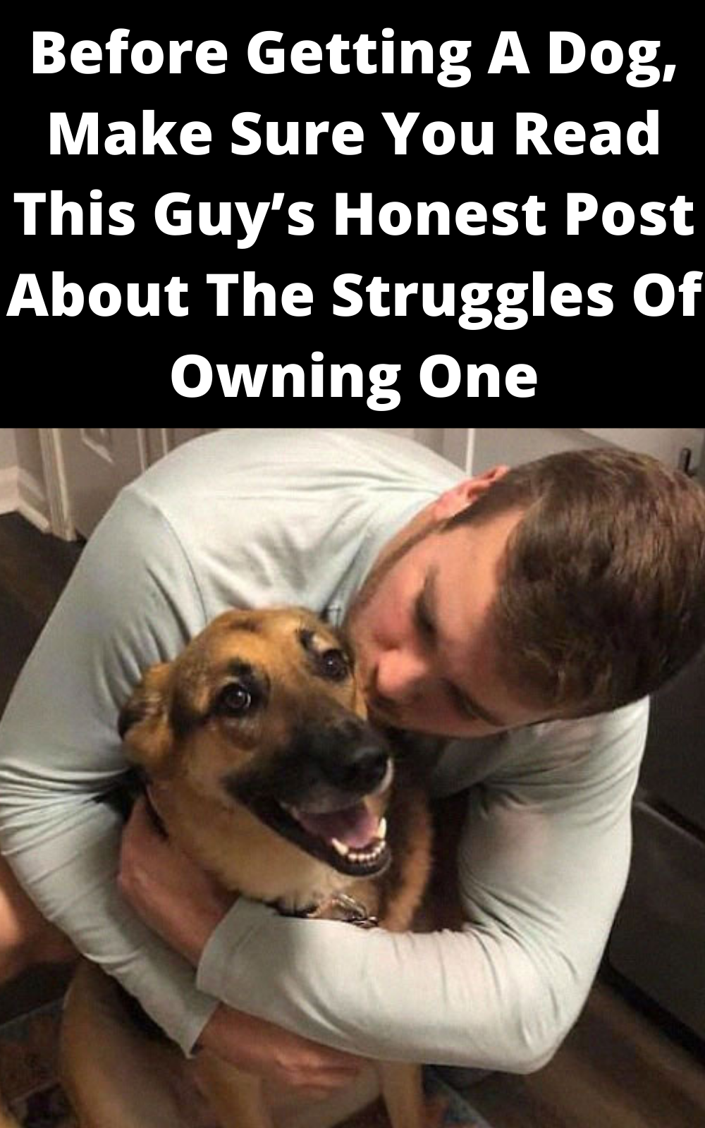 Before Getting A Dog, Make Sure You Read This Guy's Honest