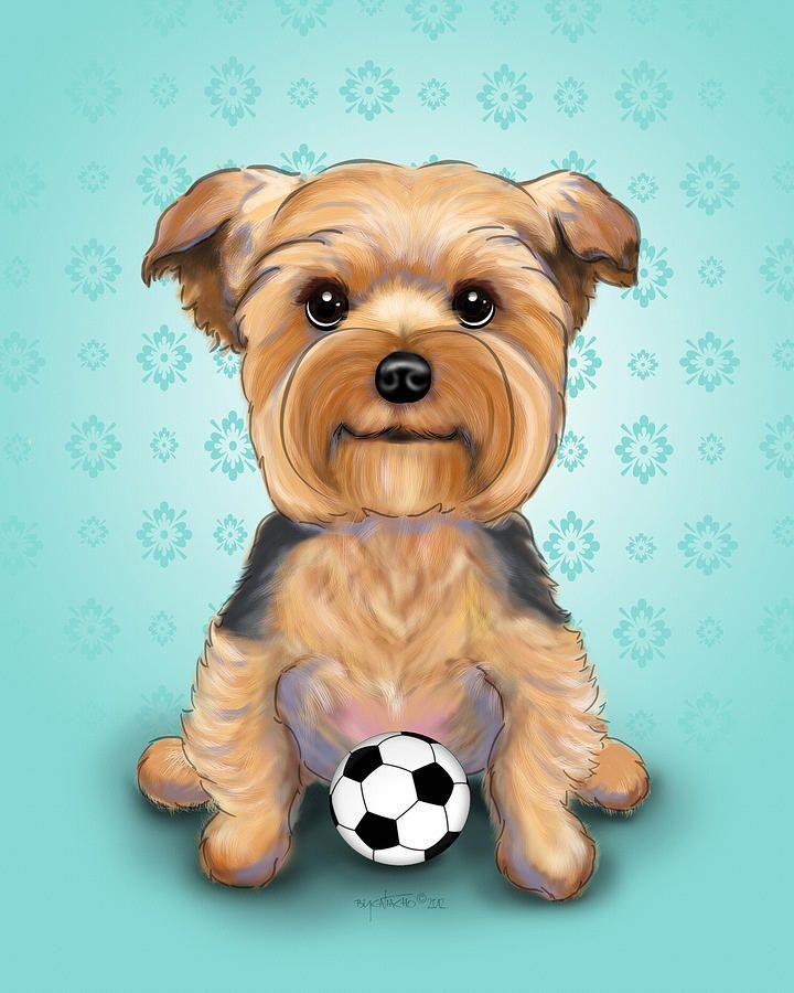 Line Drawing Of Yorkshire Terrier : Yorkie baxter hemenway yorkies