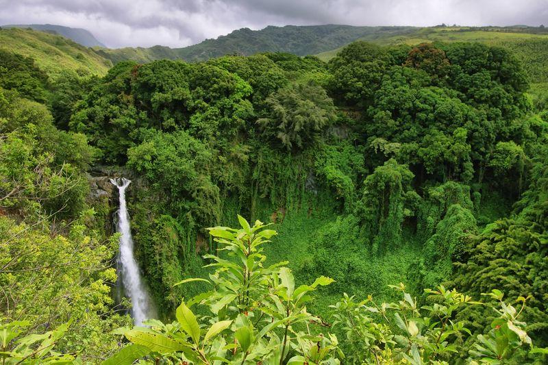Makahiku Falls Maui