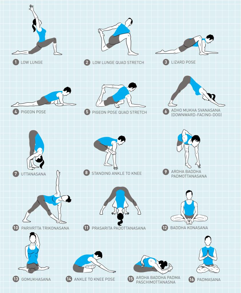 Lotus Pose Padmasana Essential Sequence Jason Crandell Vinyasa Yoga Evening Yoga Yoga Asanas Evening Yoga Sequence