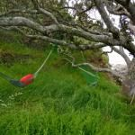 Hang a hammock and relax! My hammock in Doubtless Bay New Zealand. Travel, get inspired, live life!
