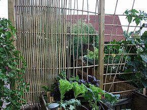 Rankgitter Sichtschutz Aus Bambus Selber Bauen