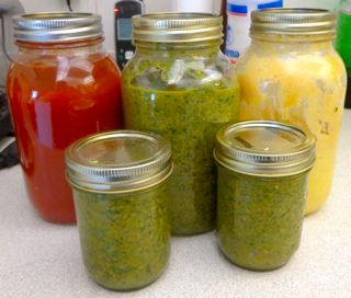 Eleni's Culinary Journey: Harvest time