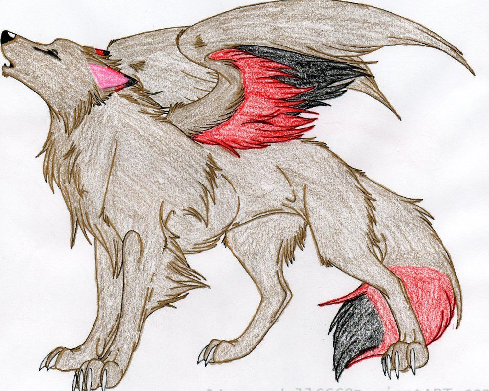 Anime Wolf Wolf Colors Mermaid Drawings Creature Drawings