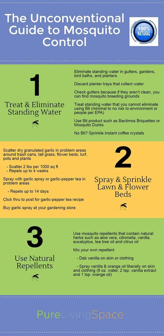 How To Get Rid Of Mosquitoes Without Harmful Chemicals Kill Mosquitoesthe Allbackyard