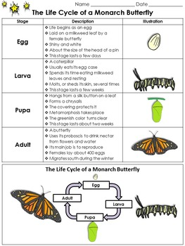 Pin On Elementary Resources K 6