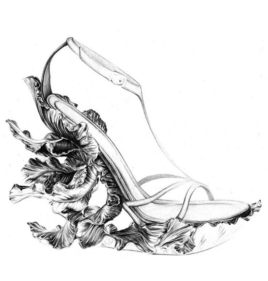 Fashion illustration - elegant shoe sketch of an Alexander ...