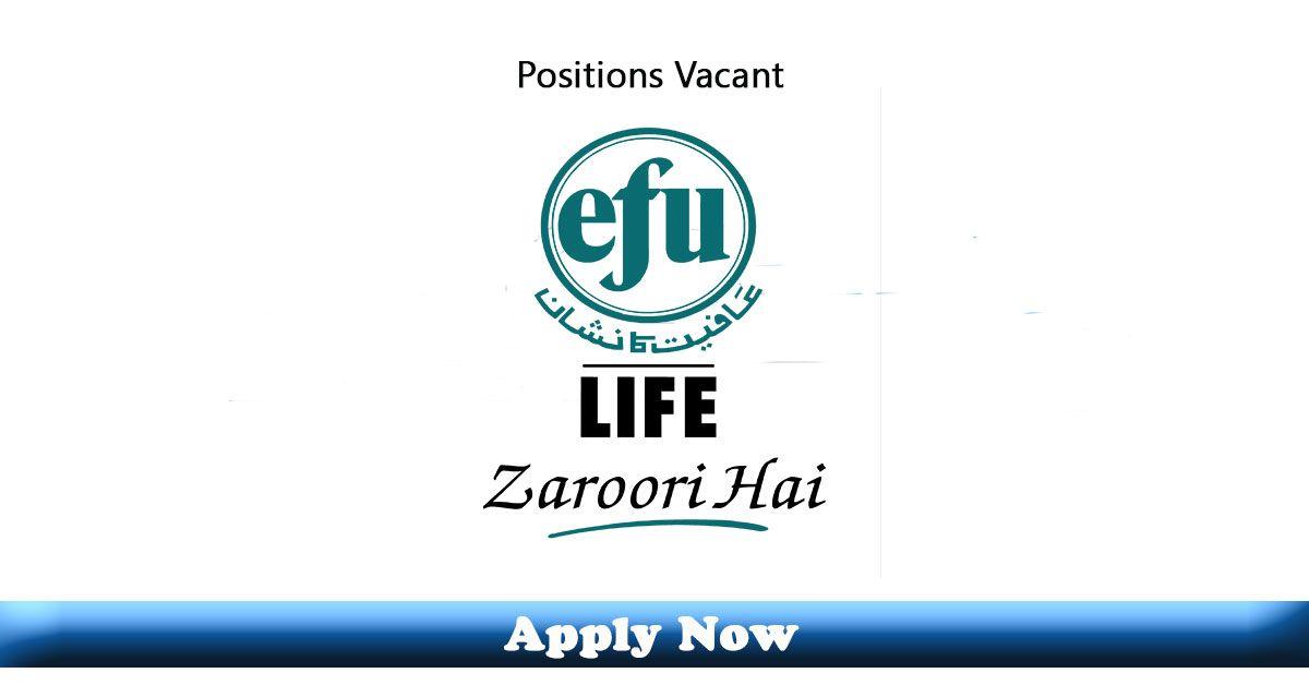 Internships And Jobs In Efu Life Insurance Islamabad And Rawalpindi 2020 Apply Now In 2020 Jobs In Pakistan Latest Jobs In Pakistan How To Apply