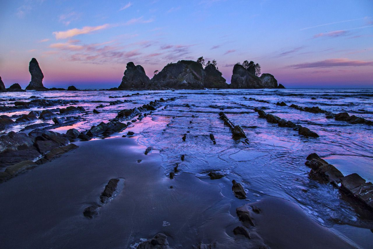 WASHINGTONNATURE.ORG - Capturing the beauty of Washington's Olympic Coast...
