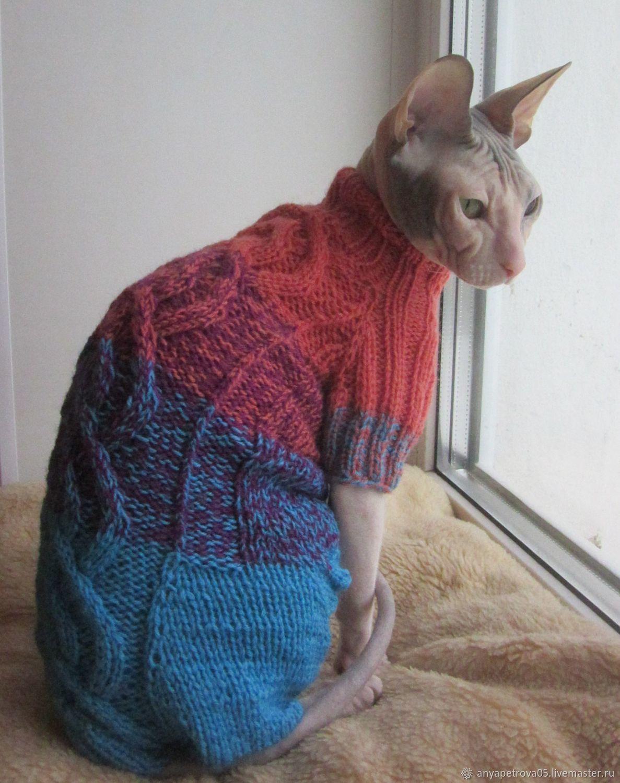 купить комбинезон для кошкикота сфинкс комбинированный одежда