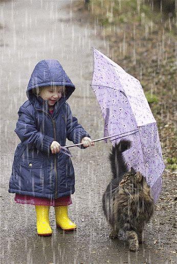 Bilderparade CDXXVI - Die letzte der Woche! #cuteumbrellas