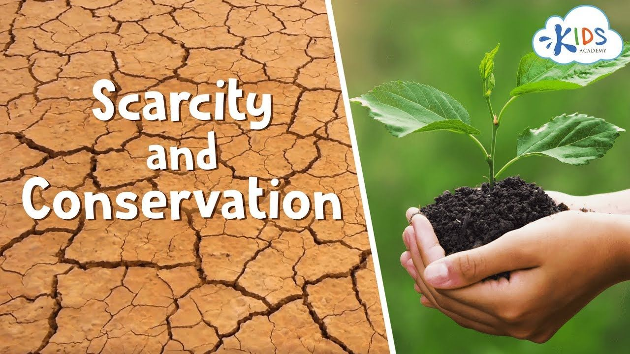 Saving Earth S Resources How To Conserve Natural Resources Water Air Kids School Conservation Of Natural Resources How To Dry Basil Programming For Kids