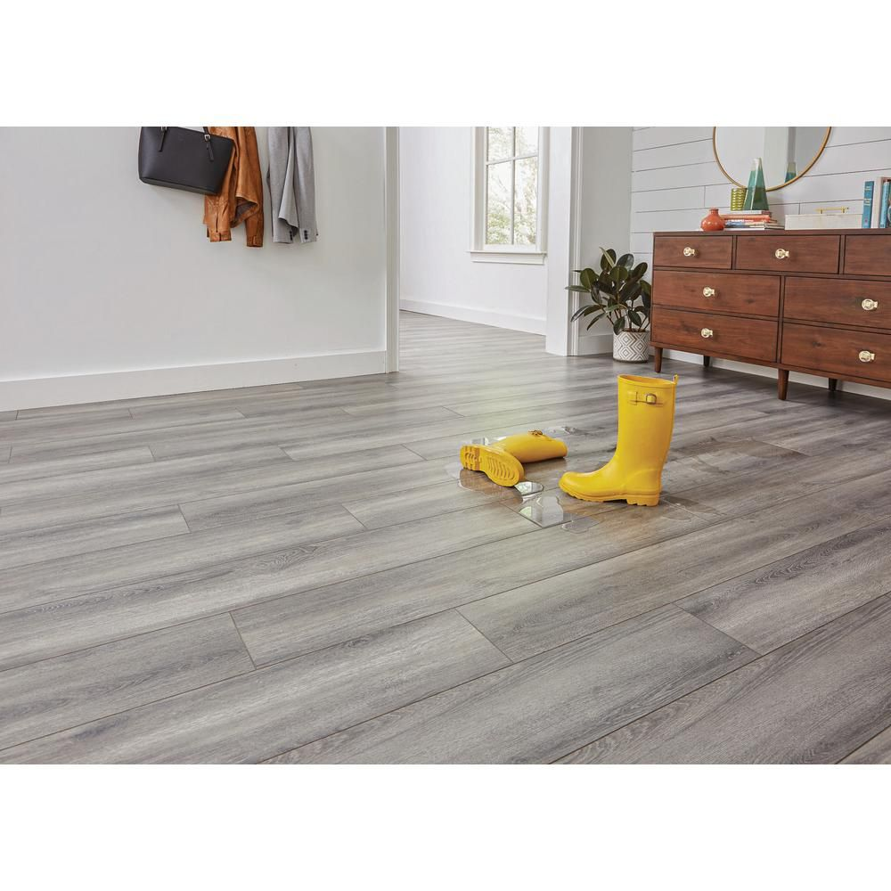 Home decorators collection disher oak 8mm thick x 803 in