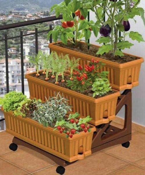 Confined Kitchen Garden Ideas My Kitchen Garden Apartment Patio