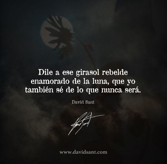 Dile a ese girasol rebelde enamorado de la luna, que yo también sé de lo que nunca será. - David Sant