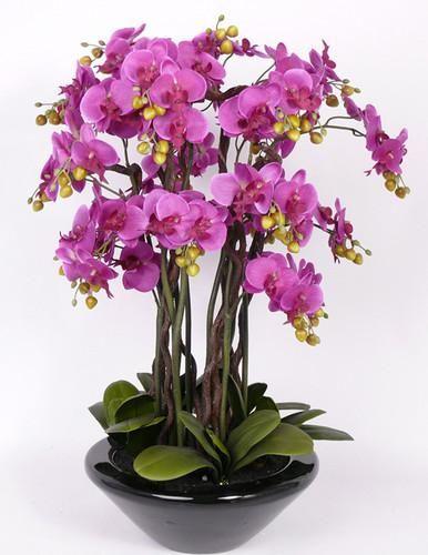 superbe arbre orchidee en pot fleurs artificielles 90cm. Black Bedroom Furniture Sets. Home Design Ideas