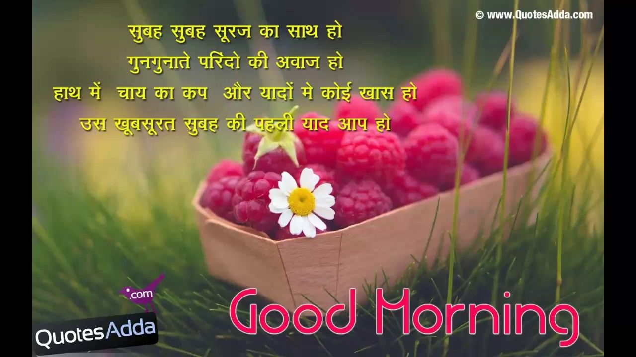 52 Good Morning Quotes In Hindi, Images, Photo, Whatsapp ...