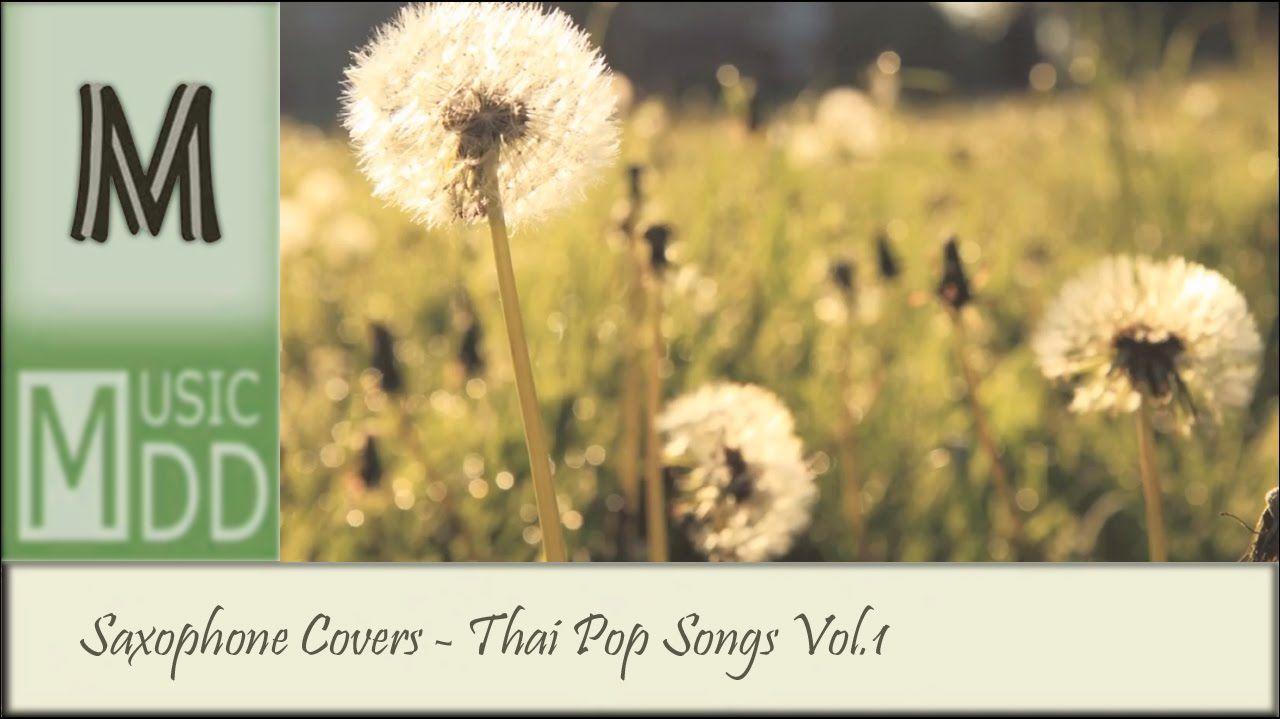 รวมเพลงไทย Cover เพราะๆ บรรเลงแซกโซโฟน - Saxophone Covers Vol.