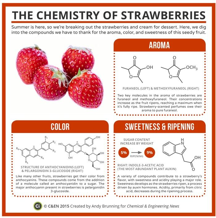 the chemistry of strawberries compound chemistry and c en  the chemistry of strawberries compound chemistry and c en magazine
