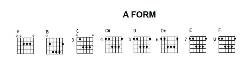 Learn To Play Guitar Barre Chords Caged System All Positions Of
