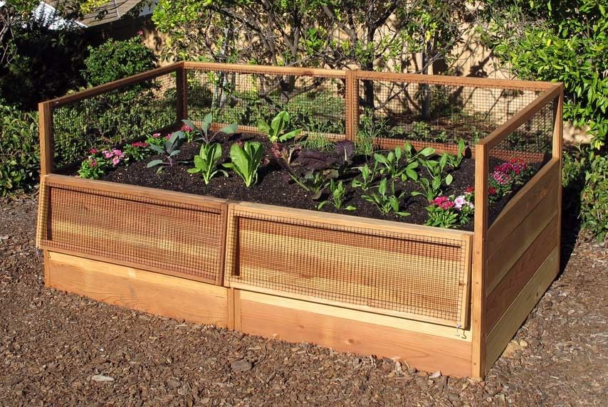 3 39 X 6 39 Raised Garden Bed With Hinged Fencing For Sissy Pinterest Raised Garden Beds