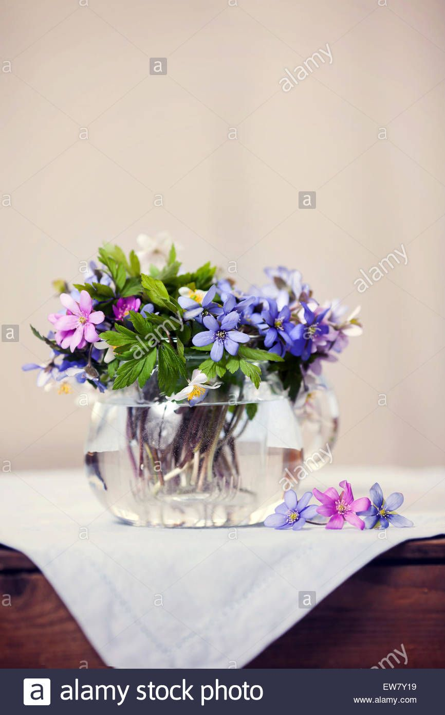 Glass vase with fresh spring forest flowers, few flowers ...