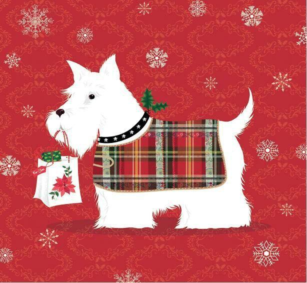 Christmas scotland birthday christmas gaelic greetings christmas m4hsunfo