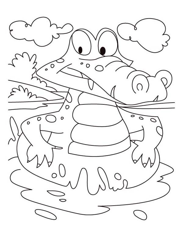 alligator swims in the river coloring page - Free \ Printable - new alligator coloring pages to print