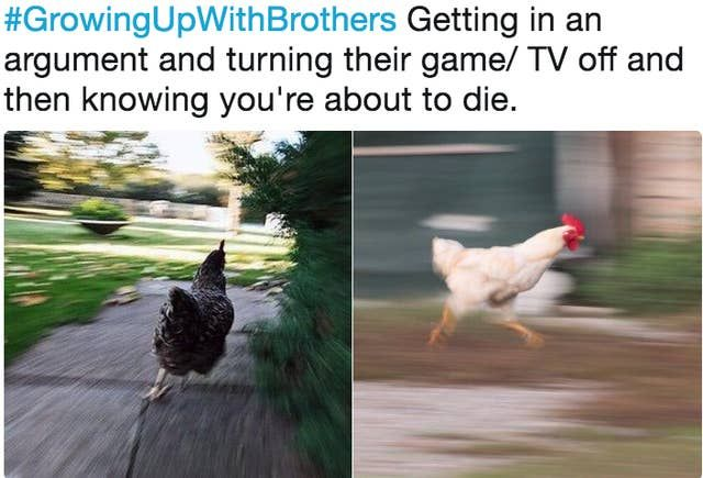 23 Memes You'll Feel In Your Soul If You Have A Male Sibling