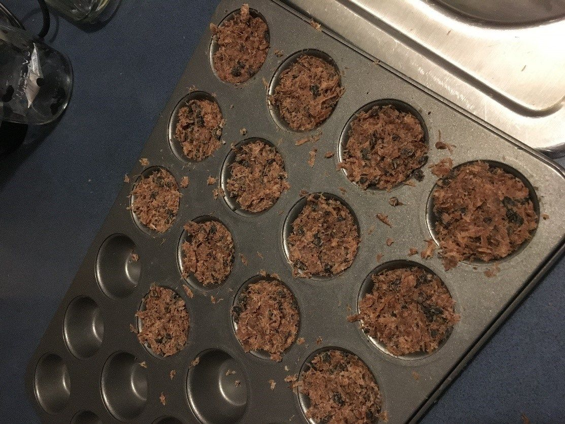 How to Make Your Own Pemmican The Organic Prepper