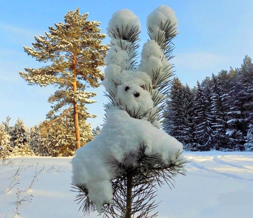 Зима приколы картинки