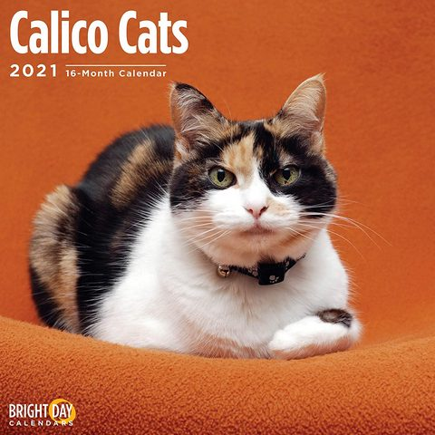 Calico Cats 2021 Calendar 2021 Calico Cats Calendar The Word Calico Doesn T Actually Refer To A Breed Of Cat But Rather A Col In 2020 Cat Calendar Calico Cat Cats