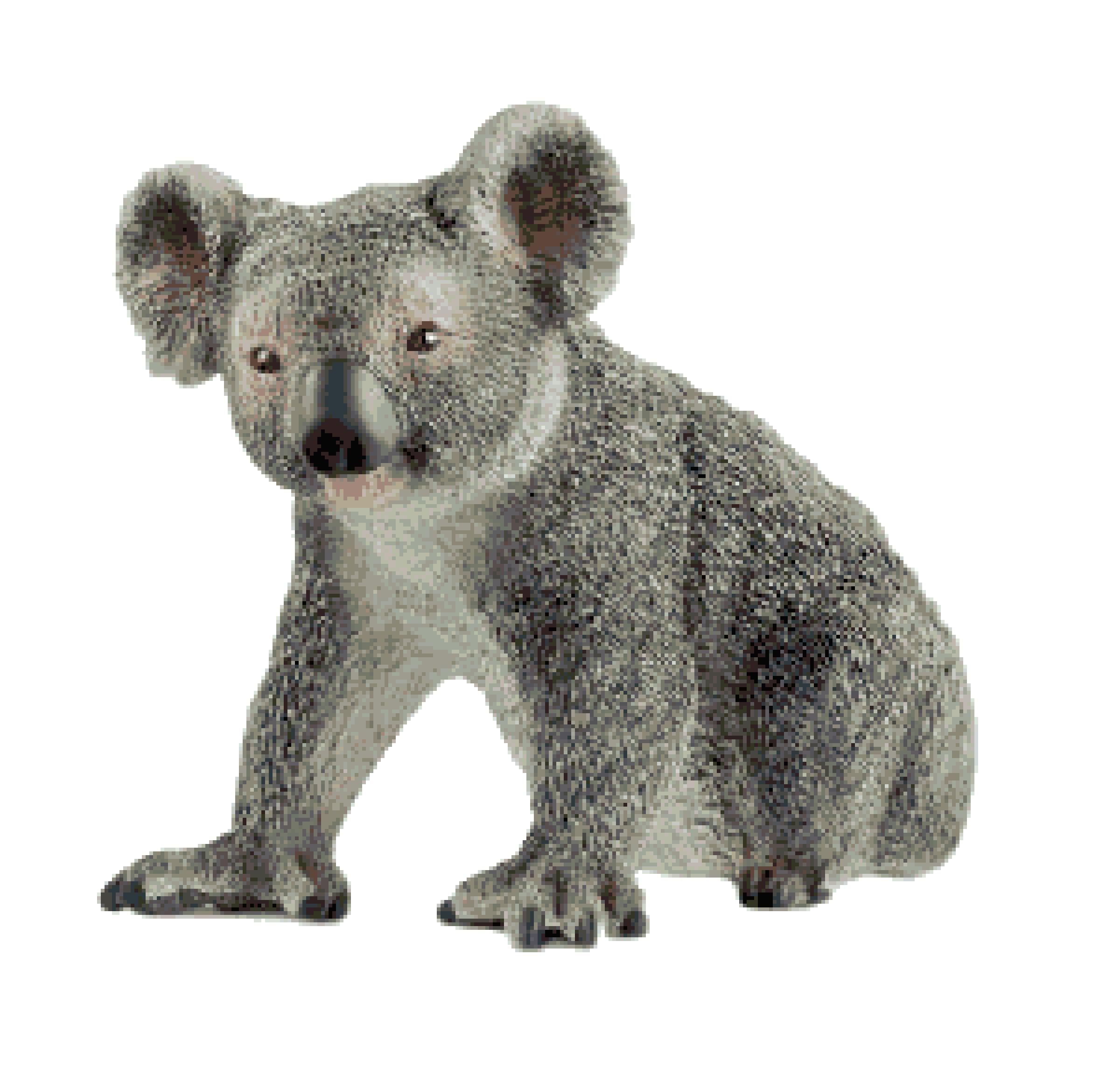 Koala Bear Cross Stitch Pattern Australian Koala Bear Etsy In 2020 Bear Stuffed Animal Koala Bear Koala