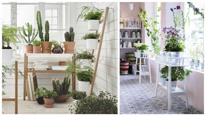 habiller les murs avec des plantes idees d co ikea. Black Bedroom Furniture Sets. Home Design Ideas