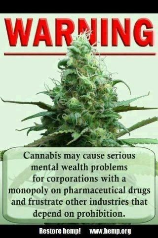 Cannabis the only super weed on the planet that is the competition of Big Pharma, Big Oil, Steel, Coal, Cotton and Paper.  So many companies rely on its prohibition.