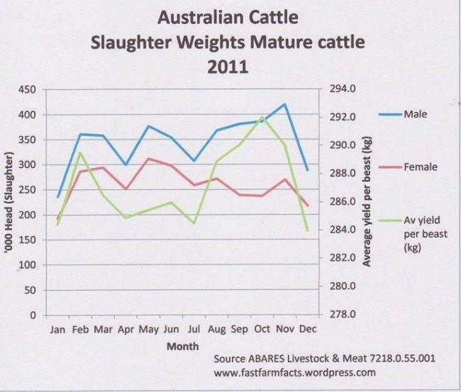 Australian Cattle Dog Weight Chart