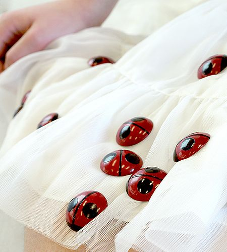 Ladybugs detail