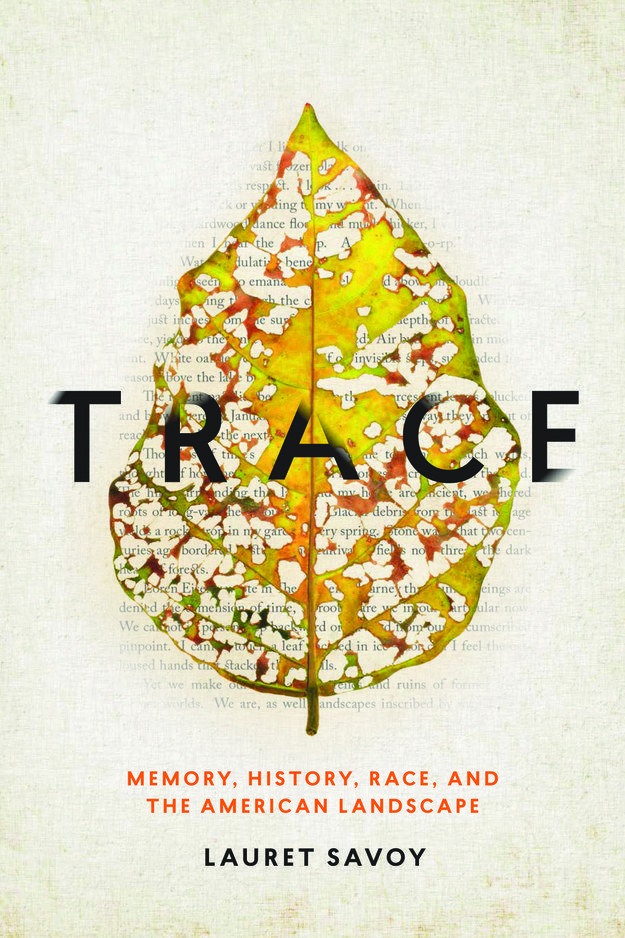 Trace by Lauret Savoy | 34 Of The Most Beautiful Book Covers Of 2015