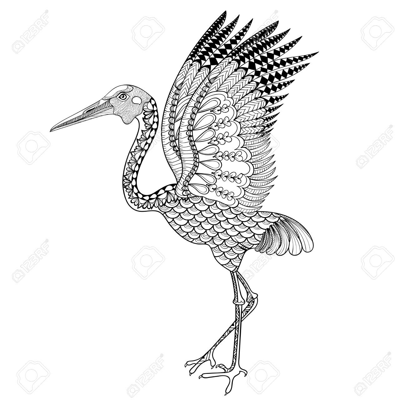 Image Result For Great Blue Heron Zentangle Bird Coloring Pages