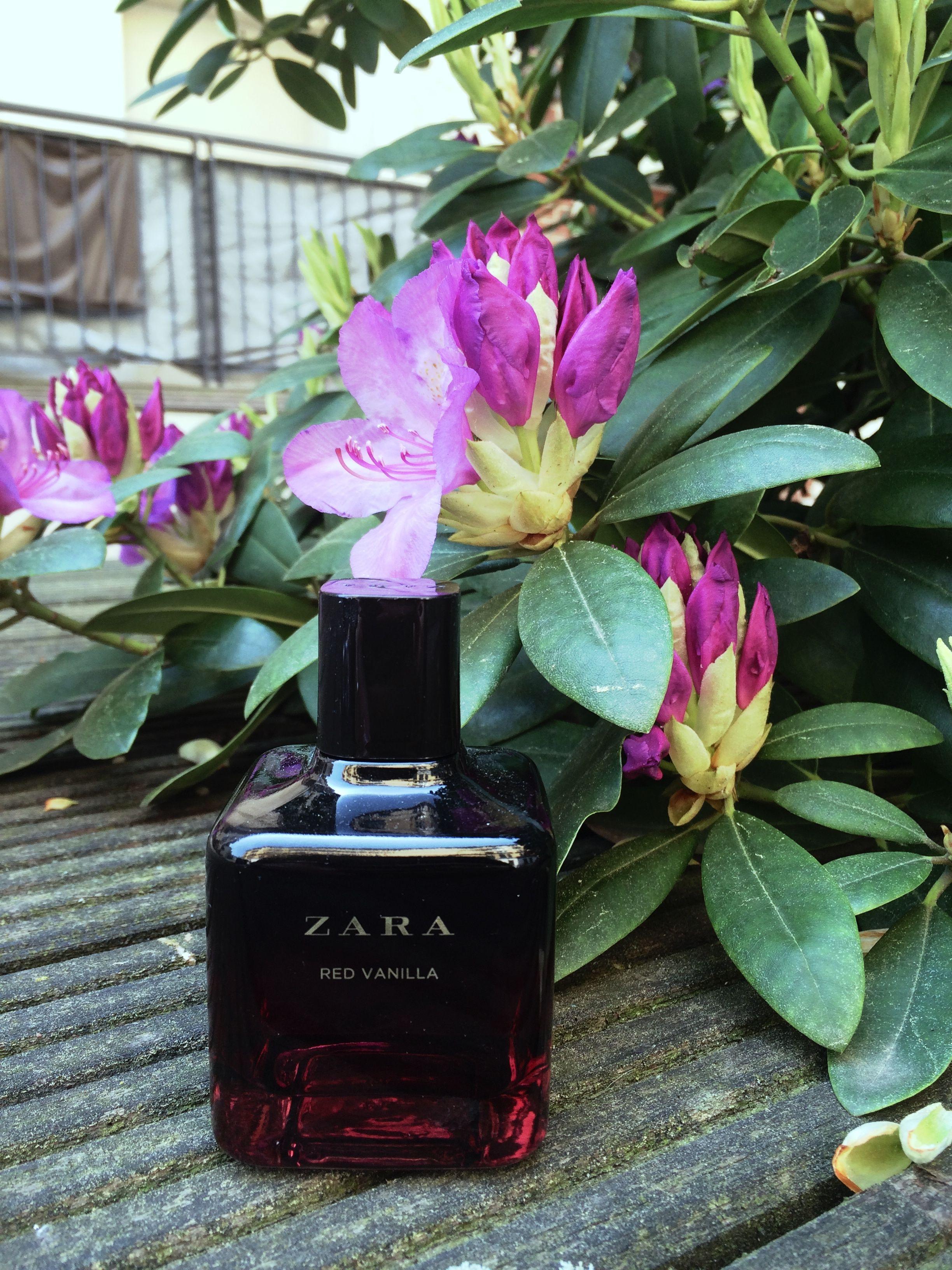 Zara Perfume Red Vanilla Cheap But Beautiful Oriental Perfume