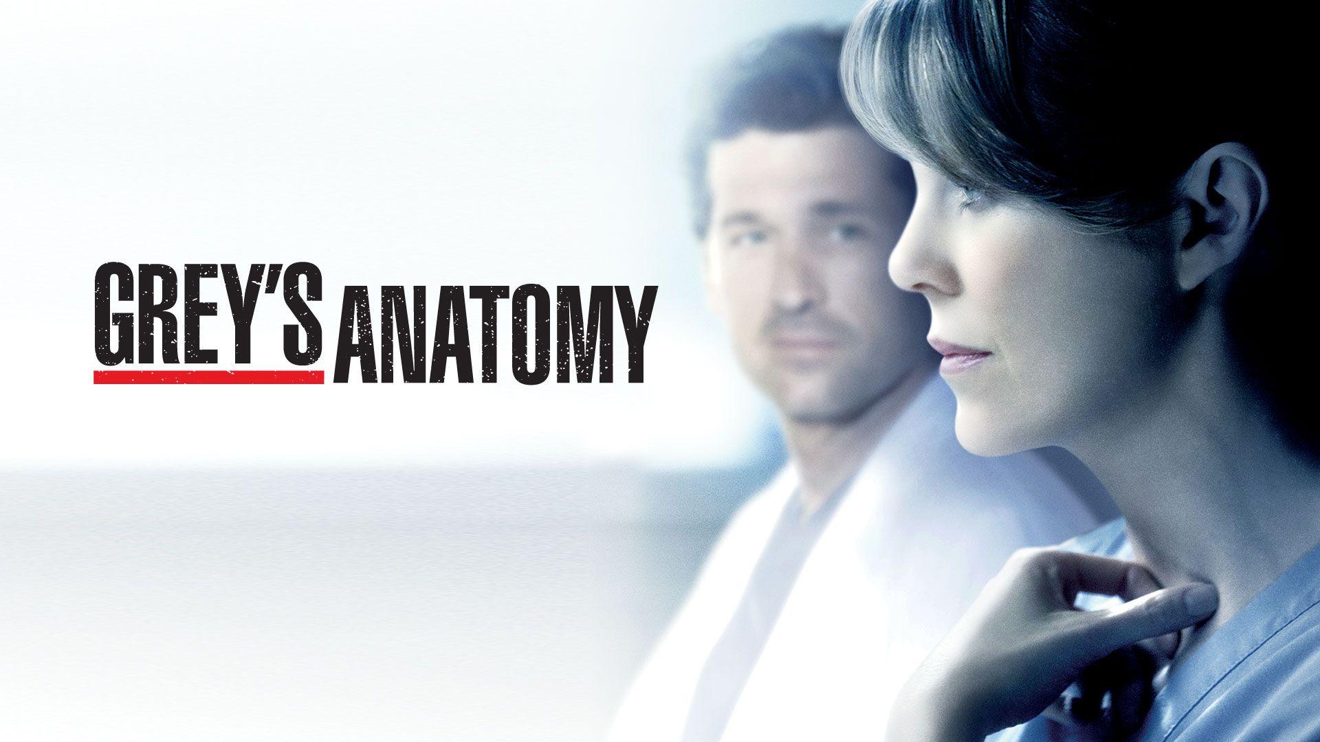 Nett Gray Anatomy Series Zeitgenössisch - Menschliche Anatomie ...