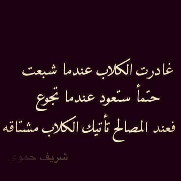 كلاب مصالح Real Quotes Wisdom Quotes Islamic Quotes